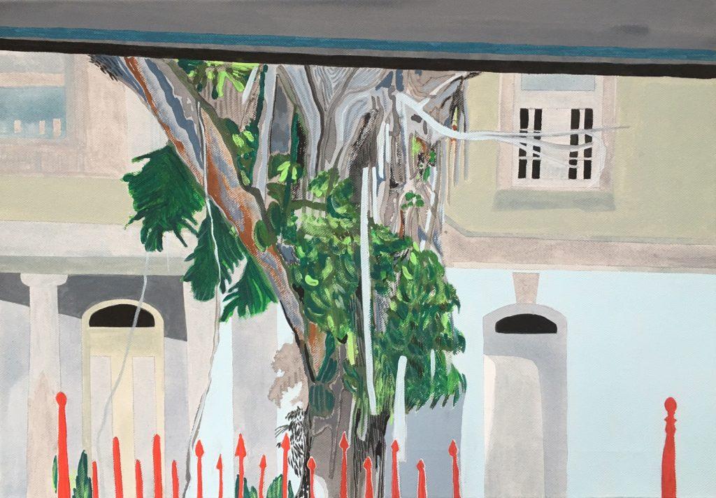 Condado (A tree in San Juan)